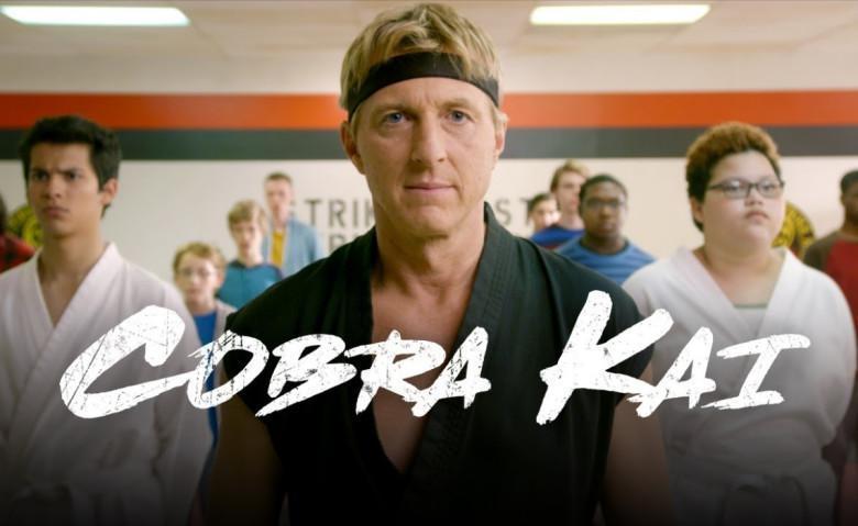 5 Séries no estilo de Cobra Kai para assistir